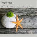 wellness zen relaxing album