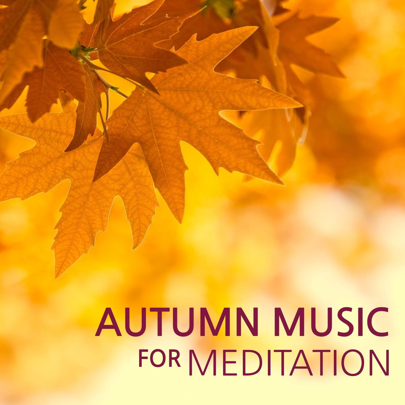 Top Relaxing Music Playlist: Best Relaxation Songs November 2014
